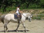 ma ponette - Pony (7 years)